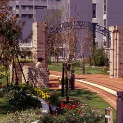 Partial view of the garden and archway to the hospital